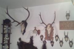 siedziba koła łowieckiego milówka 5